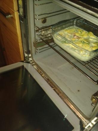 Schieb, schieb' in Ofen rein!