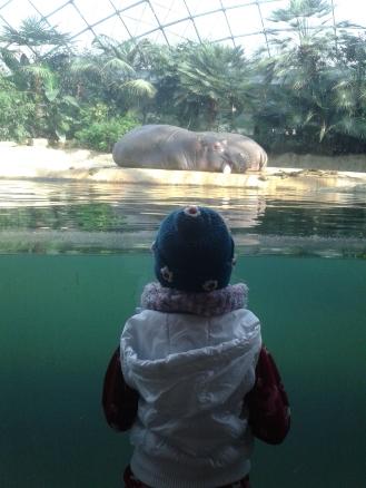 Mädchen mit Nilpferd
