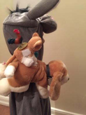 Hahn auf Katze auf Hund auf Esel I