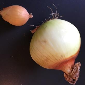 Zwiebeln, klein & groß.