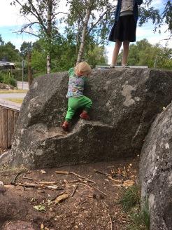 Auf dem Felsen