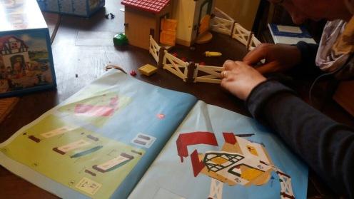 Aufbau Ponyhof II