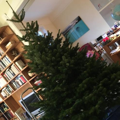 Baum steht.