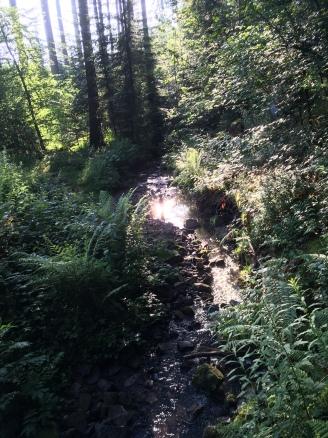 ... und Fluss, alles fotografiert vom KM