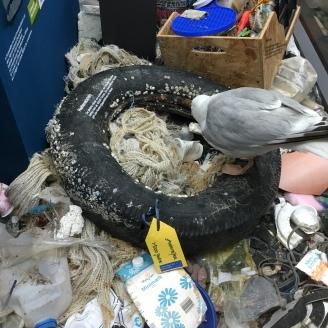 Müll I