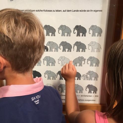 Elefanten I
