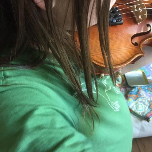 Geige.